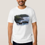 Ocean and rocky shore of remote area 2 shirt