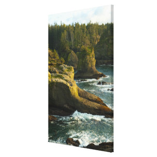 Ocean and rocky shore of remote area canvas print
