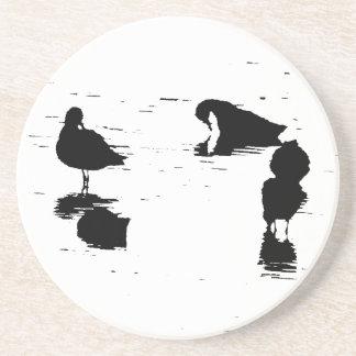 Ocean Beach Birds Shorebirds Wildlife Animals Coaster