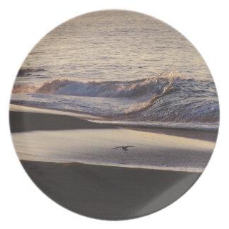 Ocean Beach Waves California Coast Plate