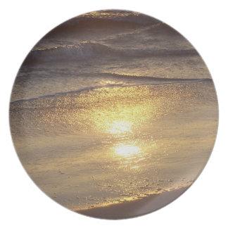 Ocean Beach Waves Sea California Coast Dinner Plate