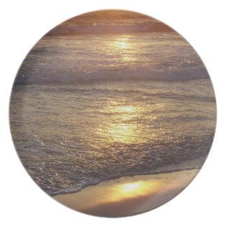 Ocean Beach Waves Sea California Coast Plate