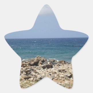 Ocean Beauty Star Sticker