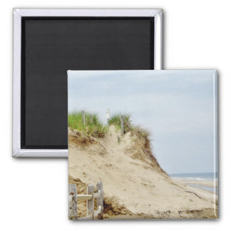 Ocean bluff photo 2 inch square magnet