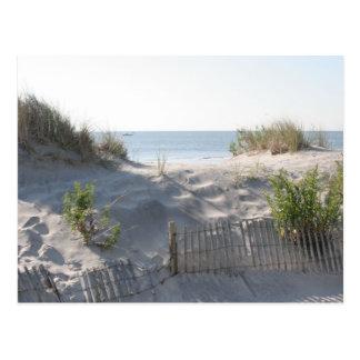 Ocean City Dunes Postcards