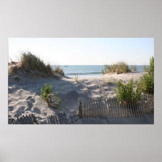 Ocean City Dunes Poster