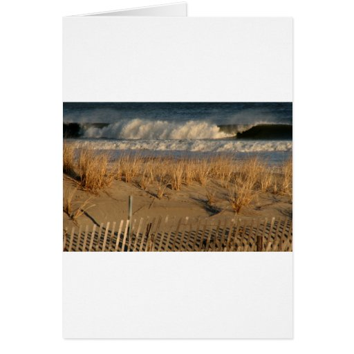 Ocean City Dunes with Waves Card