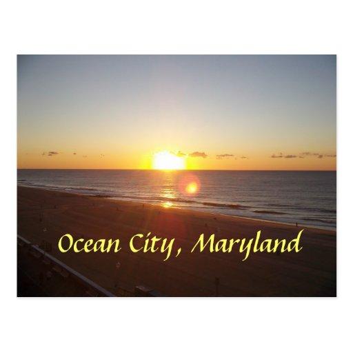 Ocean City, MD Sunrise Postcards