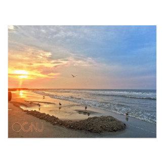 Ocean City New Jersey Post Card-Sunrise Seagulls Postcard