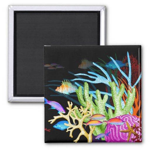 Ocean Colors Magnet