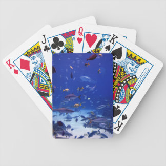 Ocean Depth Bicycle Playing Cards