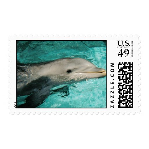 ocean dolphin stamps