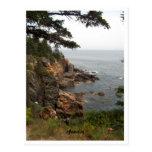 Ocean Drive in Acadia Postcards