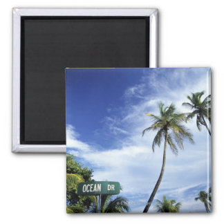 Ocean Drive' road sign, South Beach, Miami, Florid Refrigerator Magnets