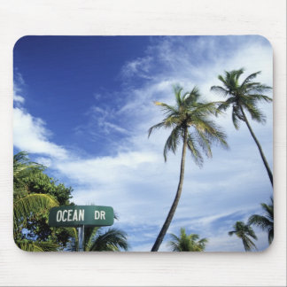 Ocean Drive' road sign, South Beach, Miami, Florid Mouse Pad