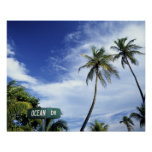 Ocean Drive' road sign, South Beach, Miami, Florid Poster
