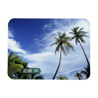 Ocean Drive' road sign, South Beach, Miami, Florid Rectangle Magnet