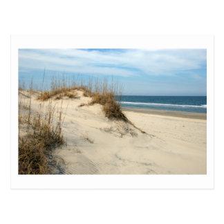 Ocean Dunes (customize) Postcard