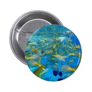 Ocean Fish Pins