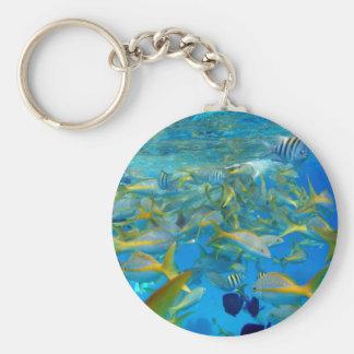 Ocean Fish Key Chain