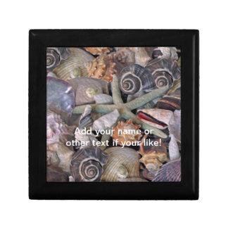 Ocean Gems Seashell Treasures in Magenta Trinket Boxes