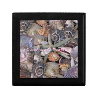 Ocean Gems Seashell Treasures in Magenta Gift Box