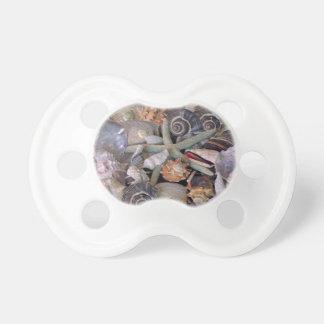 Ocean Gems Seashell Treasures in Magenta Pacifier