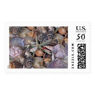 Ocean Gems Seashell Treasures in Magenta Postage