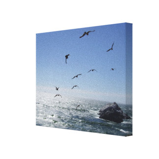 Ocean & Gulls Wrapped Canvas