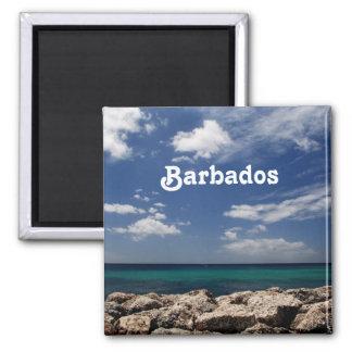 Ocean in Barbados Refrigerator Magnets