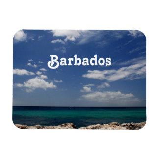Ocean in Barbados Rectangle Magnet