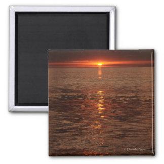 Ocean Light Magnet