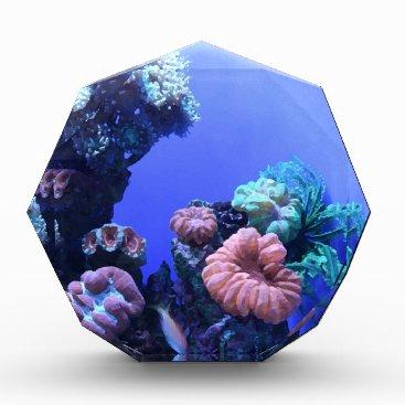Beach Themed ocean_one acrylic award