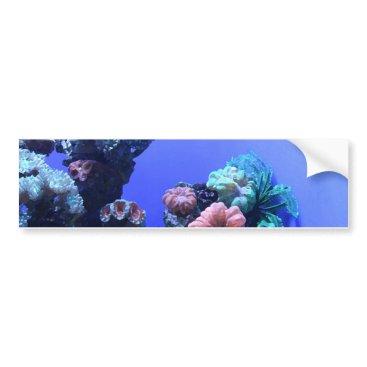 Beach Themed ocean_one bumper sticker