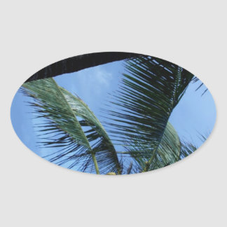 Ocean, Palms, and Yachts Oval Sticker