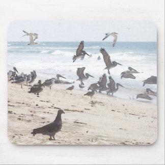 Ocean/Pelicans Mousepad