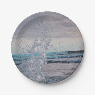 Ocean Pool Party Paper Plates