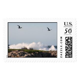 ocean postage