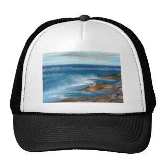 Ocean Roar Cap Hats