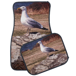 Ocean Seagull in RI car mat set