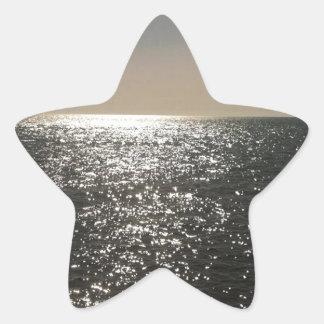 OCEAN STAR STICKER