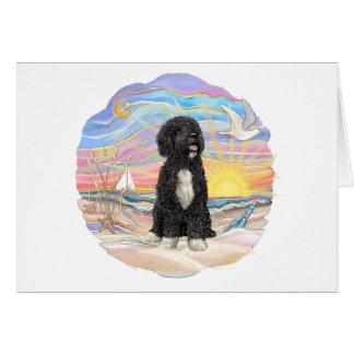 Ocean Sunrise-Portuguese Water Dog (bw5) Card