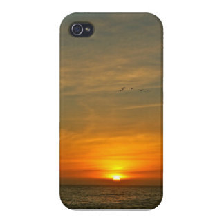 OCEAN SUNSET WITH MIGRATING BIRDS CASES FOR iPhone 4