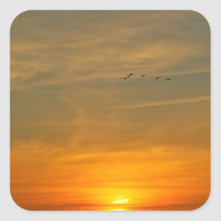 OCEAN SUNSET WITH MIGRATING BIRDS SQUARE STICKER