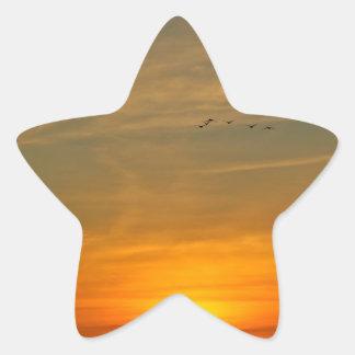 OCEAN SUNSET WITH MIGRATING BIRDS STAR STICKER