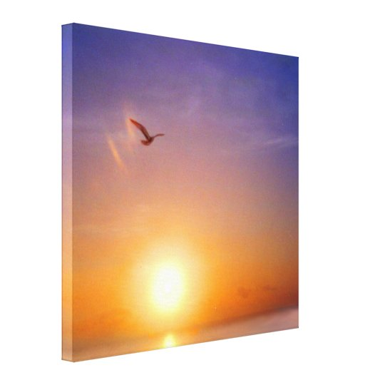 Ocean Sunset with Seagull Canvas Print