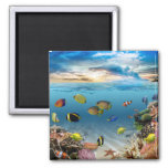 Ocean Underwater Coral Reef Tropical Fish 2 Inch Square Magnet