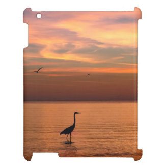 Ocean View at Sunset iPad Cases