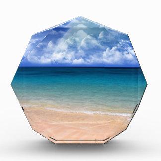 Ocean View Award