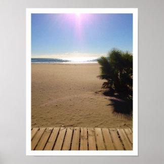 Ocean View, Beach, Palm Tree, Boardwalk Poster